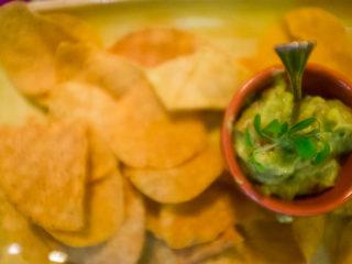 cucina-messicana-la-cucaracha-nachos-con-salsa-guacamole-cucina-messicana